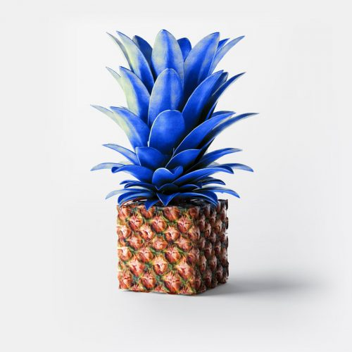CandT_Ananas